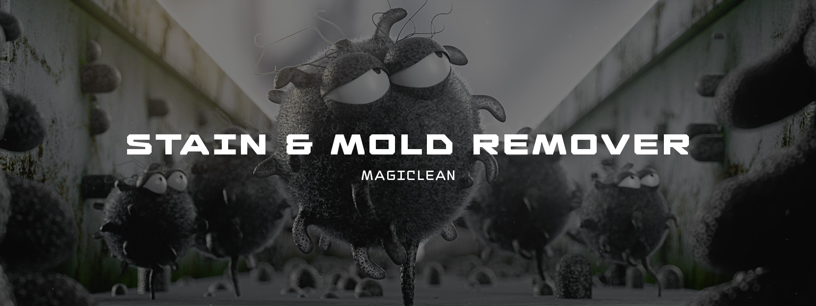 Stain & Mold Remover